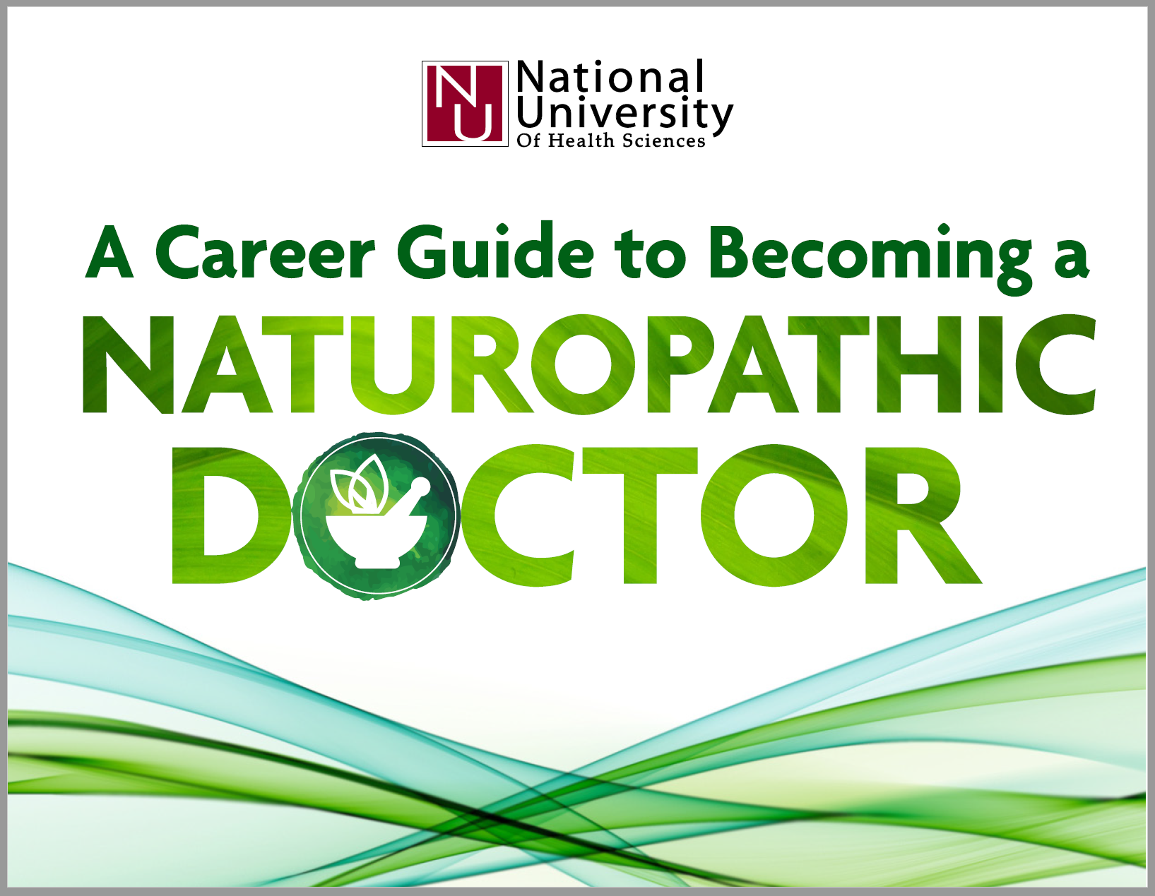 a career guide to naturopathic doctor cover.png