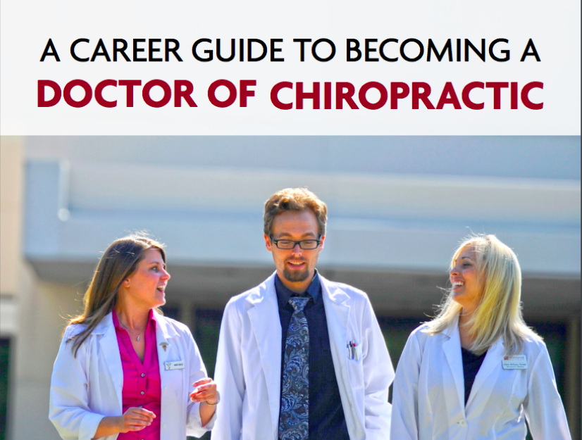 A Career Guide to Becoming a Doctor of Chiropractic